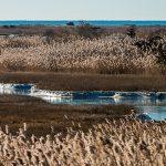 February---Ocean-View-Layers---Hugh-Fanning