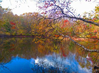 November - Kendra Murray - Fall Day at Wernick Farm