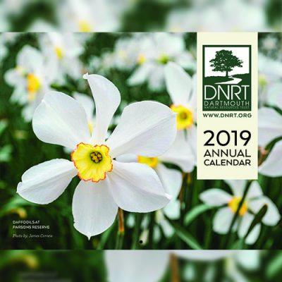 2019 DNRT Calendar