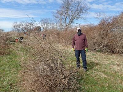 Andy Langhauser Clearing Brush at Ocean View Farm