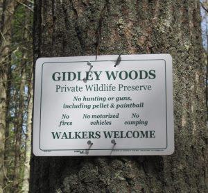 Gidley Woods