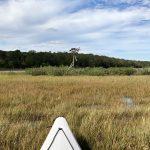 Upper Cedar Island