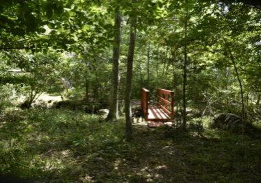 Dike Creek Reserve