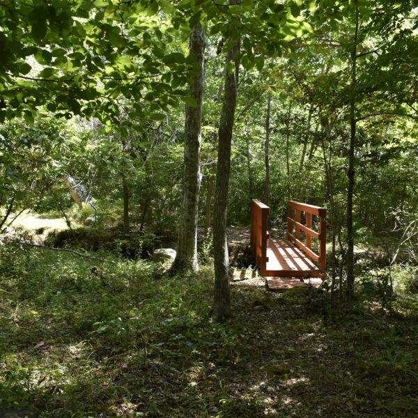 Dike Creek
