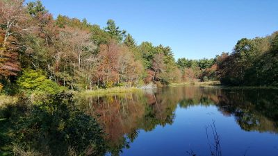 Pasky Pond