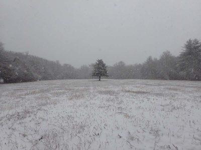 Smith Farm in Winter