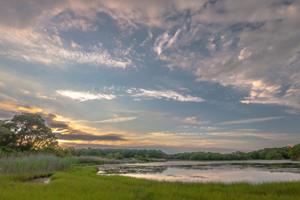 Wylde Reserve