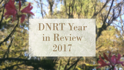 DNRT Year in Review 2017